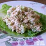 Low carb crab salad square