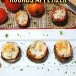 Easy eggplant tomato recipe appetizer cover
