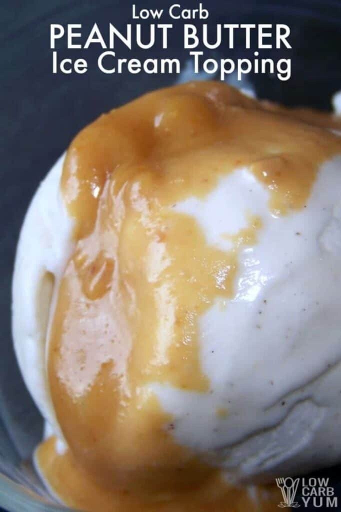 Peanut butter ice cream topping cover