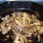 Wild Maitake Mushrooms