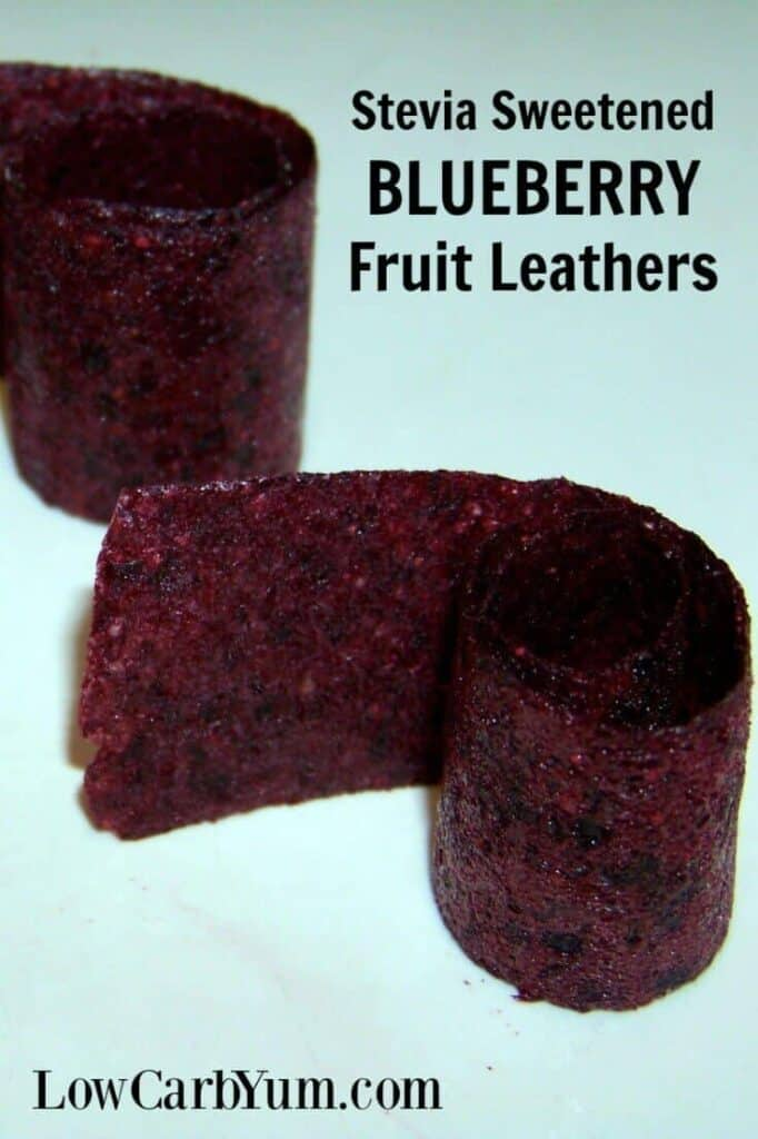 Blueberry fruit leather rolls cover