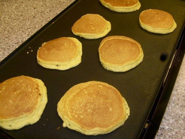 Oat Fiber Pancakes on My New Griddle