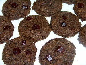 Low Carb Gluten Free Double Chocolate Cookies
