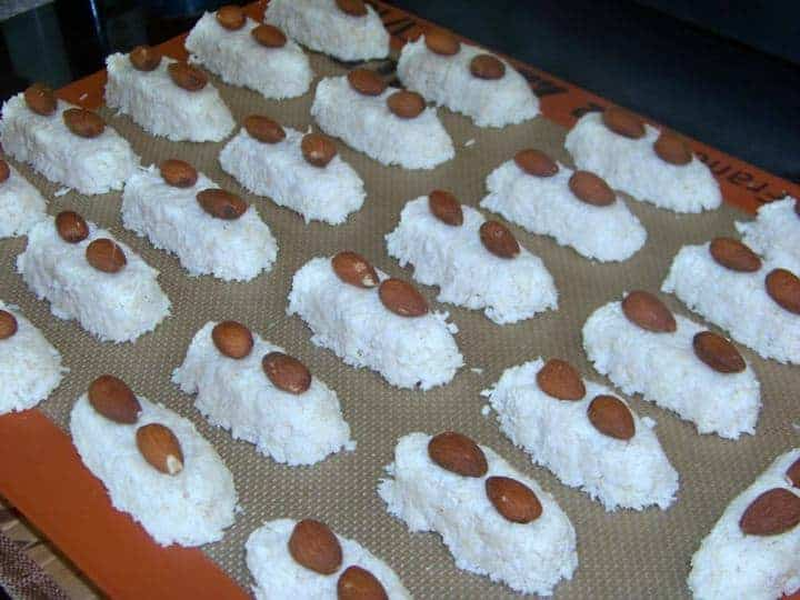Coconut low carb candy bars