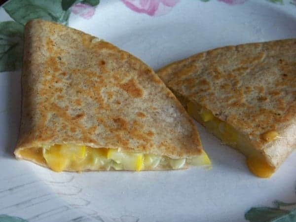 Yellow Squash Quesadilla