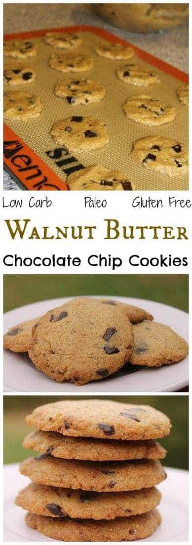 Flourless chocolate chip cookies that are low carb, gluten free, and paleo friendly. They have a light texture and subtle nutty flavor. #lowcarb #glutenfree #paleo | LowCarbYum.com