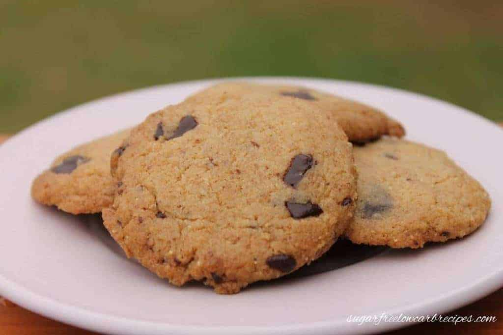 Paleo flourless chocolate chip cookies recipe
