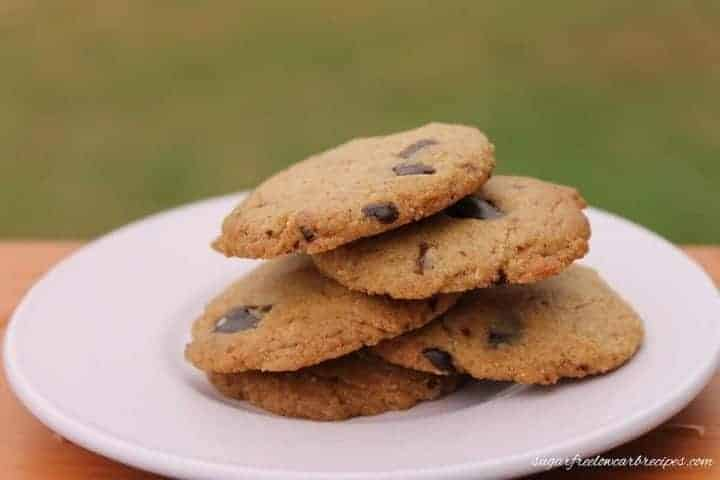 Paleo flourless chocolate chip cookies recipe