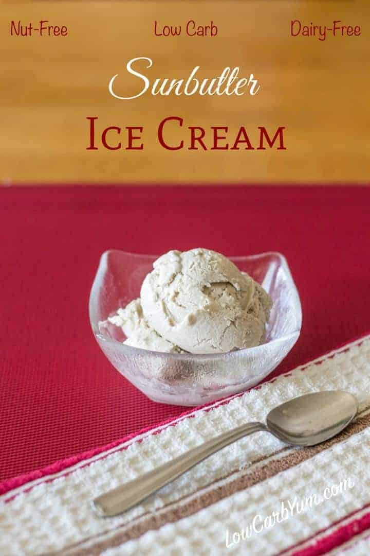 low carb sugar free dairy free ice cream recipe