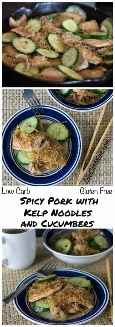 Try this Asian inspired low carb gluten free spicy pork with kelp noodles. It's a really healthy Paleo stir fry dish that is very quick and easy to prepare. LCHF Keto THM Banting Recipe