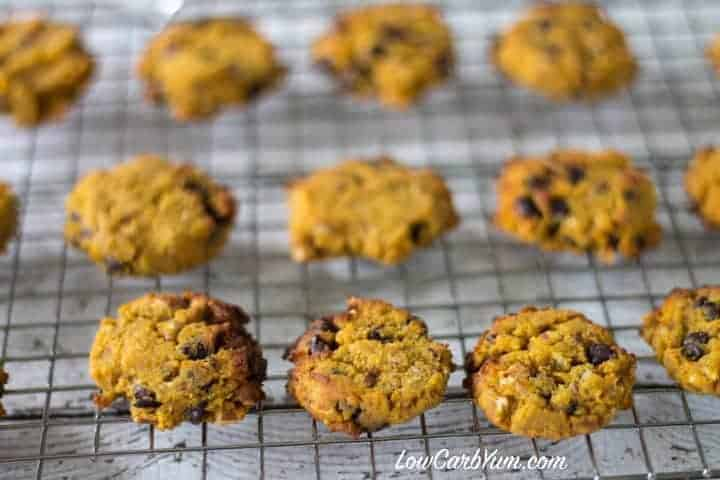 Low carb gluten free coconut flour chocolate chip pumpkin cookies recipe