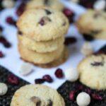 Low carb gluten free coconut flour cranberry orange cookies
