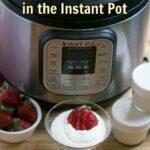 Instant Pot low carb yogurt