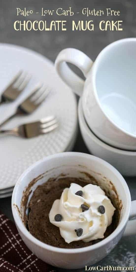 Paleo Gluten Free Chocolate Mug Cake Recipe | Low Carb Yum