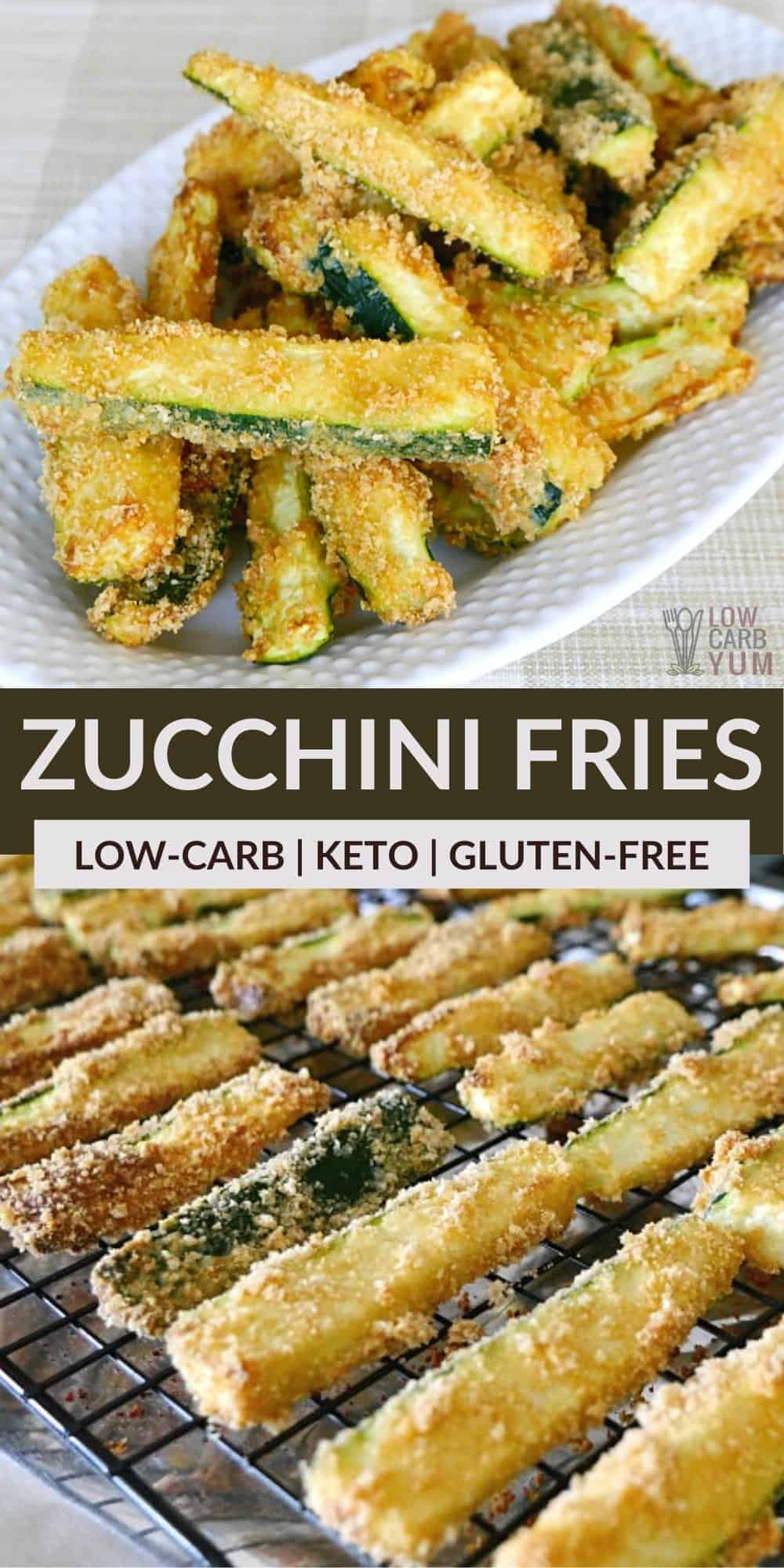 keto zucchini fries pinterest image