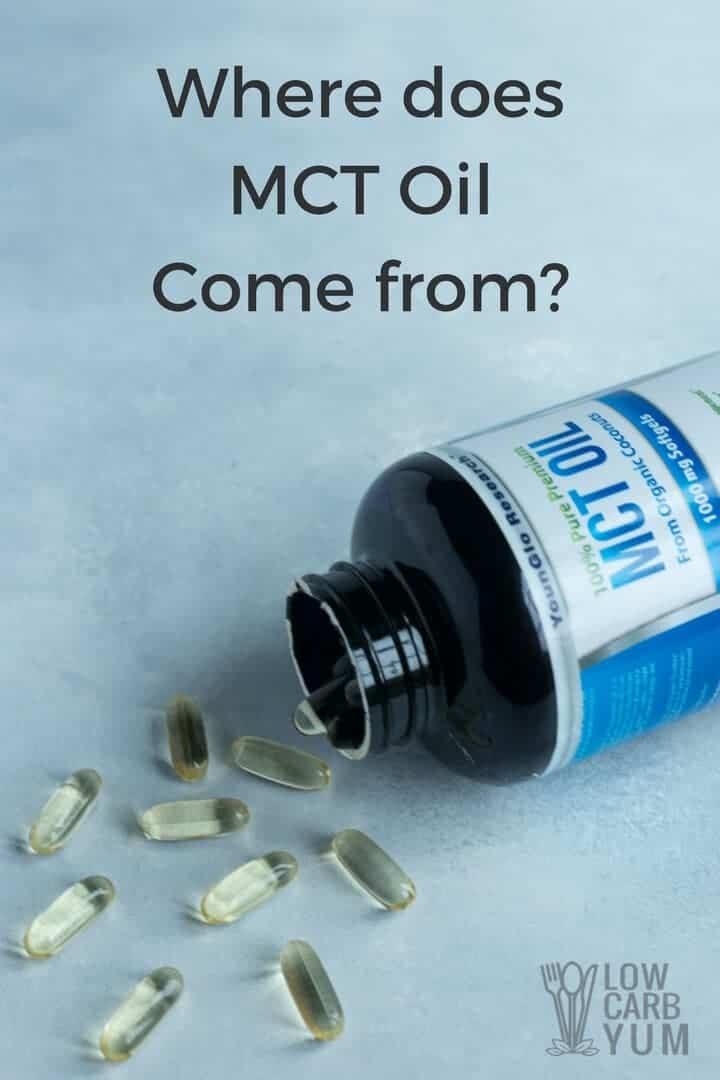Where does MCT oil come from?