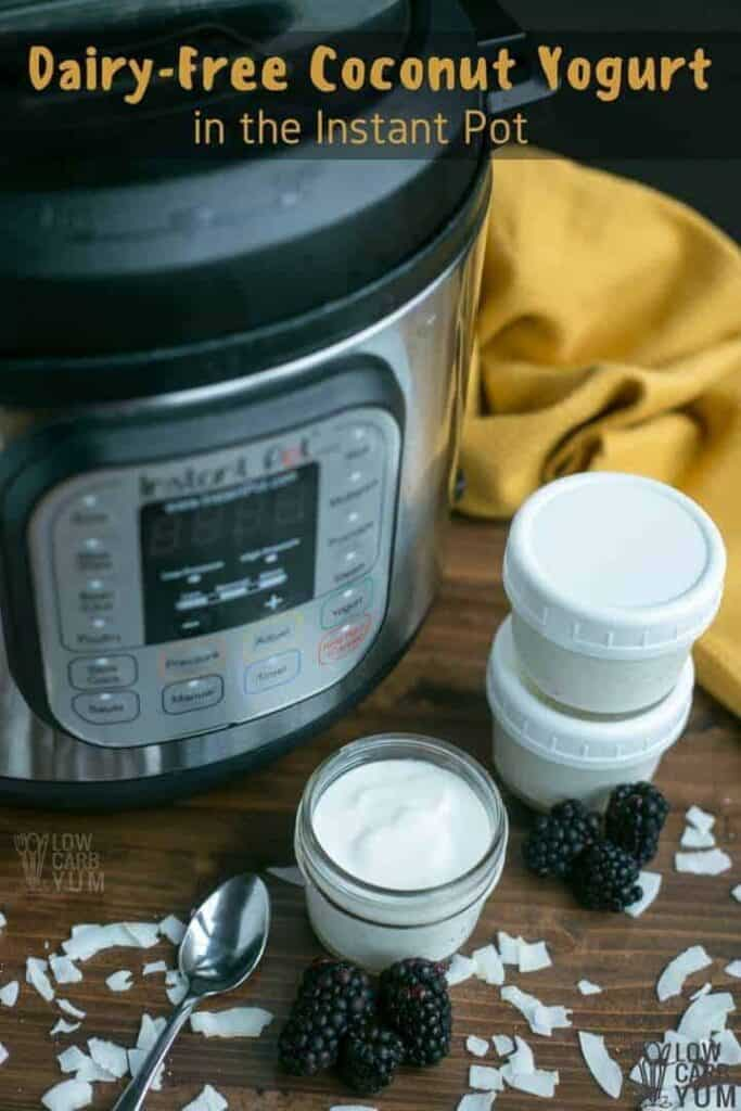 Coconut dairy free yogurt recipe in the Instant Pot
