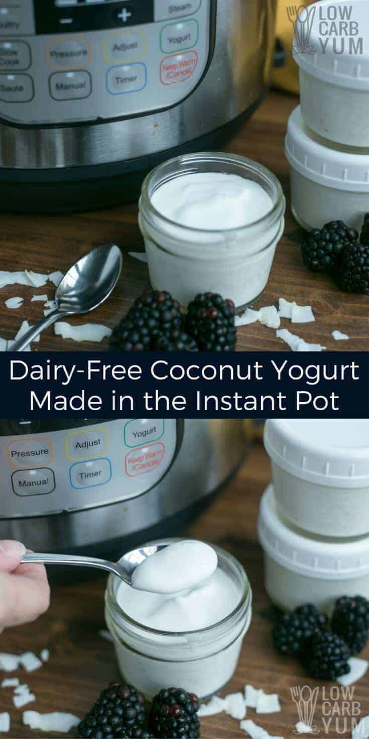 It's simple to make your own coconut dairy free yogurt in an Instant Pot. You only need two basic ingredients and a pressure cooker with a yogurt program. | LowCarbYum.com