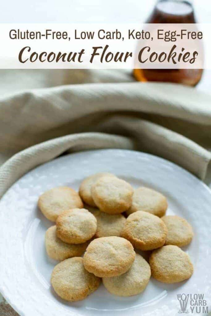 Gluten free coconut flour no egg cookies