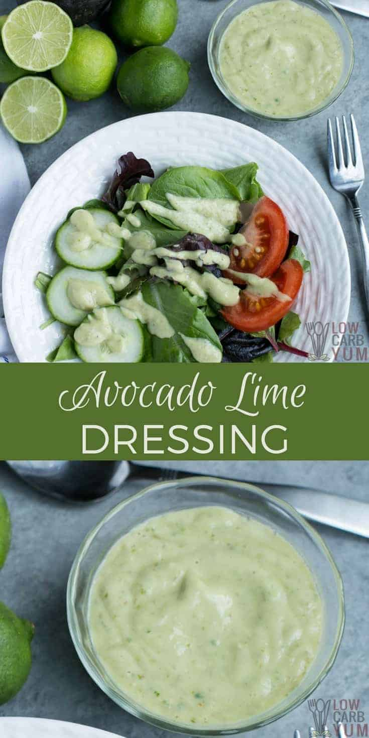 A dairy free avocado dressing with no sour cream or yogurt making it paleo friend and low inflammatory. So go ahead and enjoy this delicious salad dressing. #dairyfree #paleo #avocado #saladdressing #lowcarb #keto #ketorecipes | LowCarbYum.com