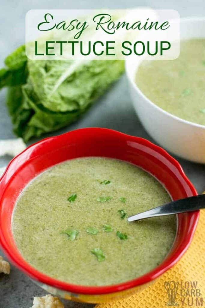 An easy romaine lettuce soup recipe recipe that's low carb and keto friendly