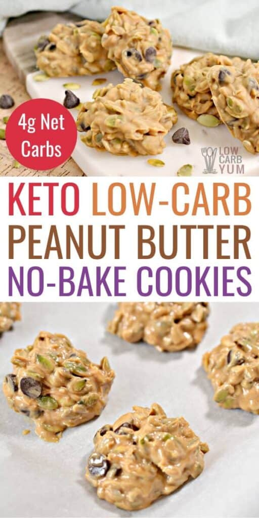 low carb keto peanut butter no bake cookies