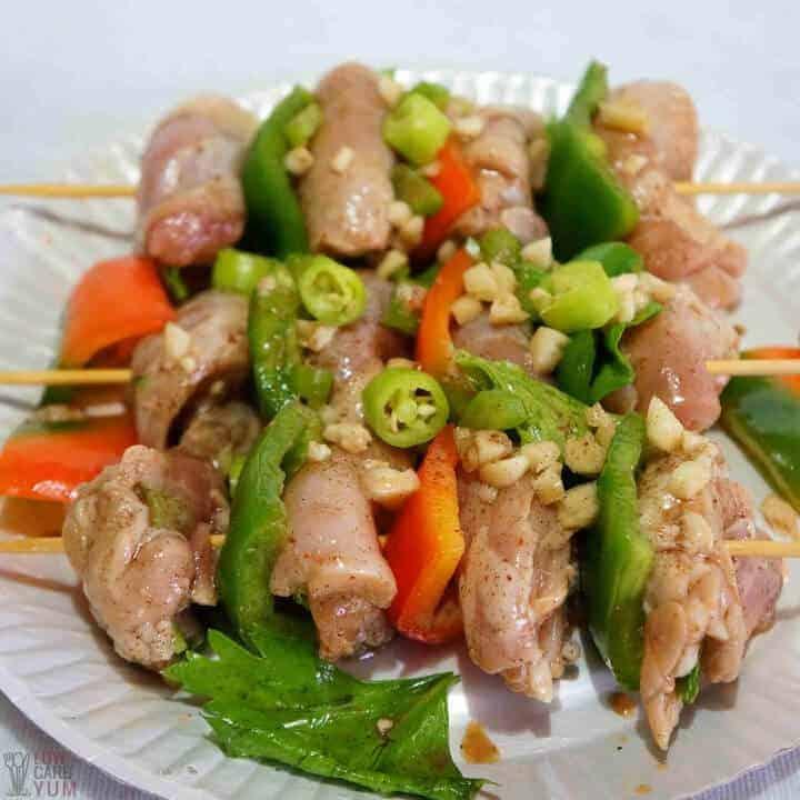 chicken shish kabob recipe on sticks