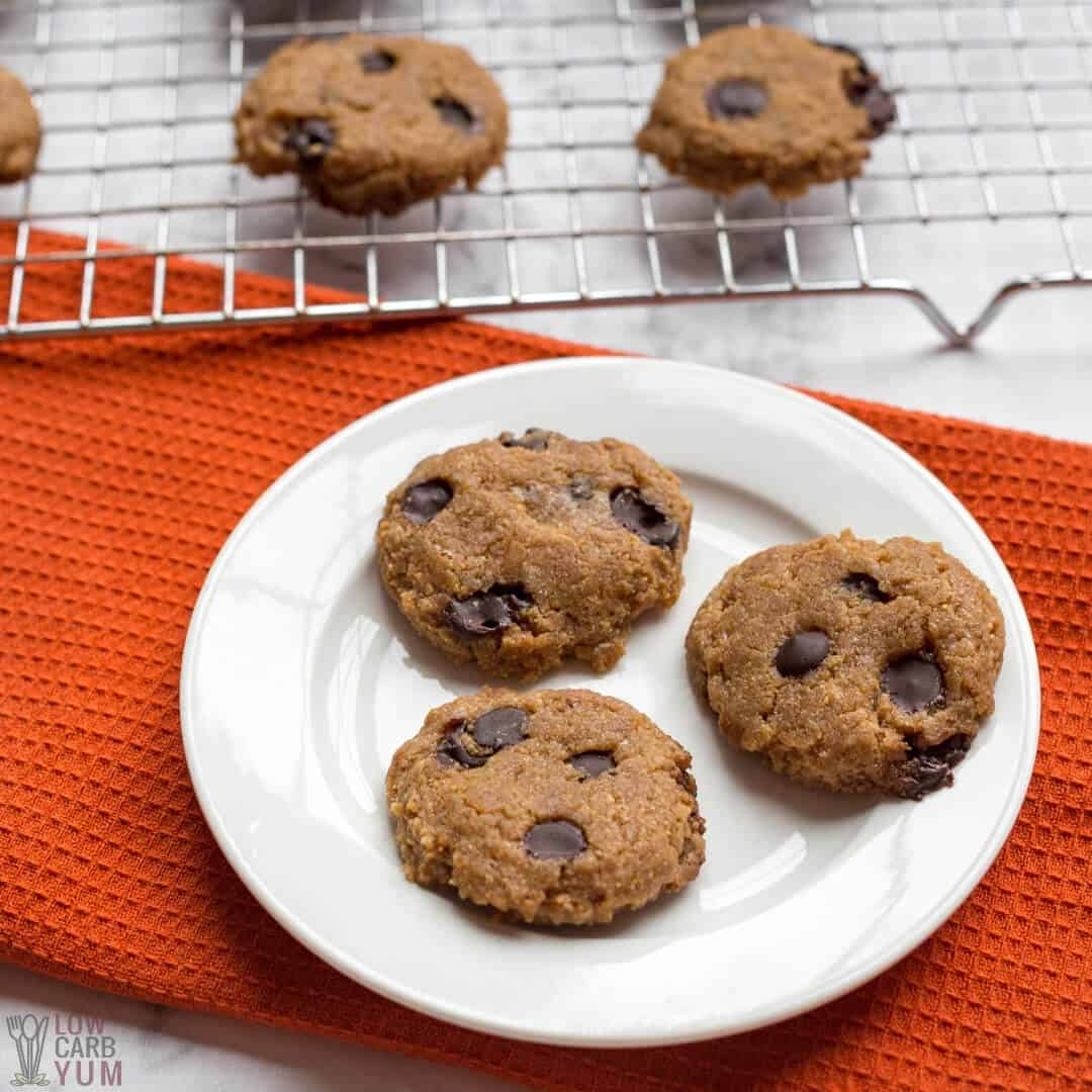 keto peanut butter chocolate chip cookies