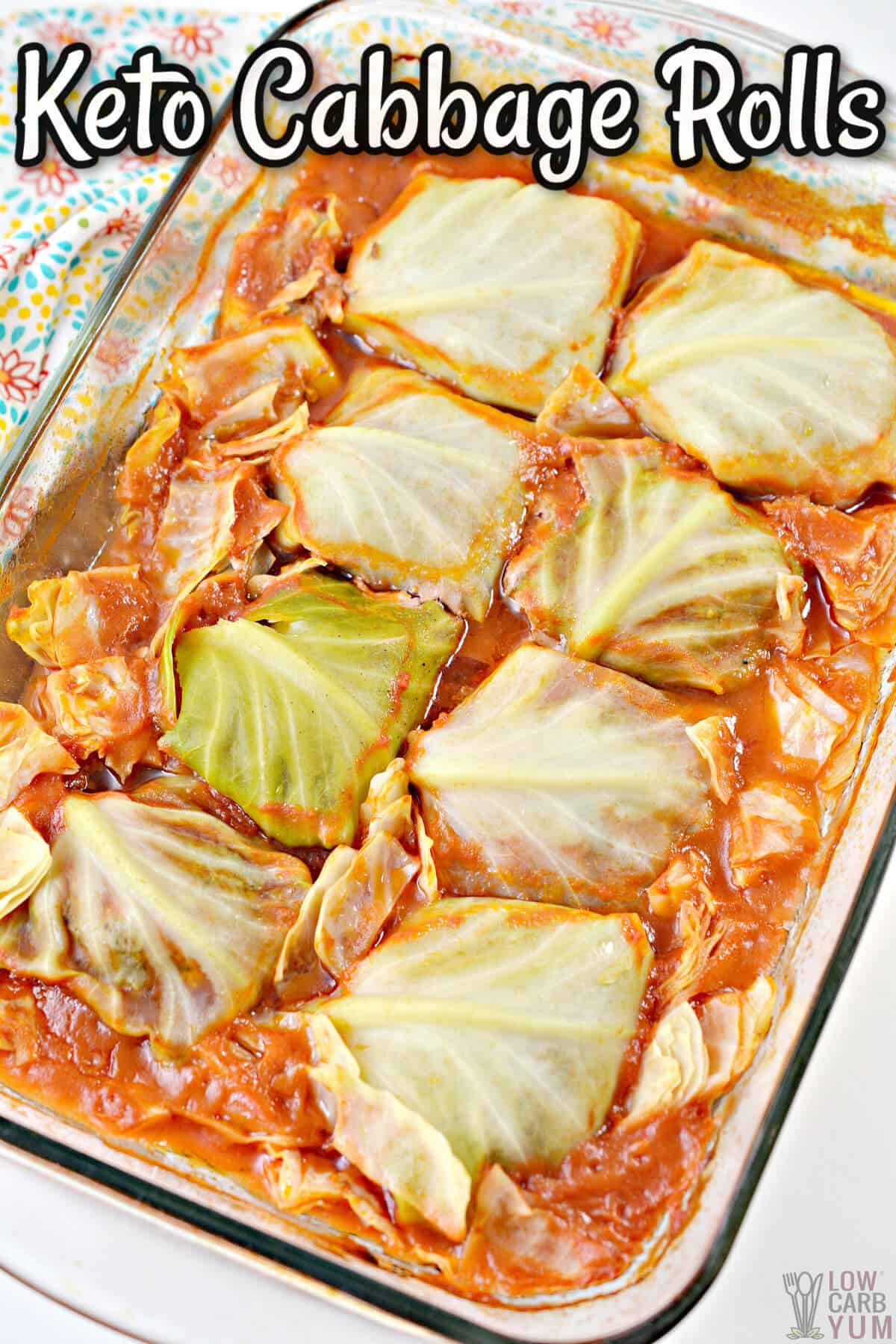 keto cabbage rolls cover image