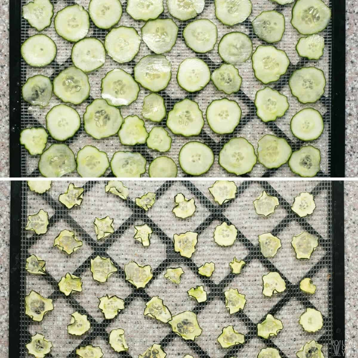 cooking cucumber slices on trays