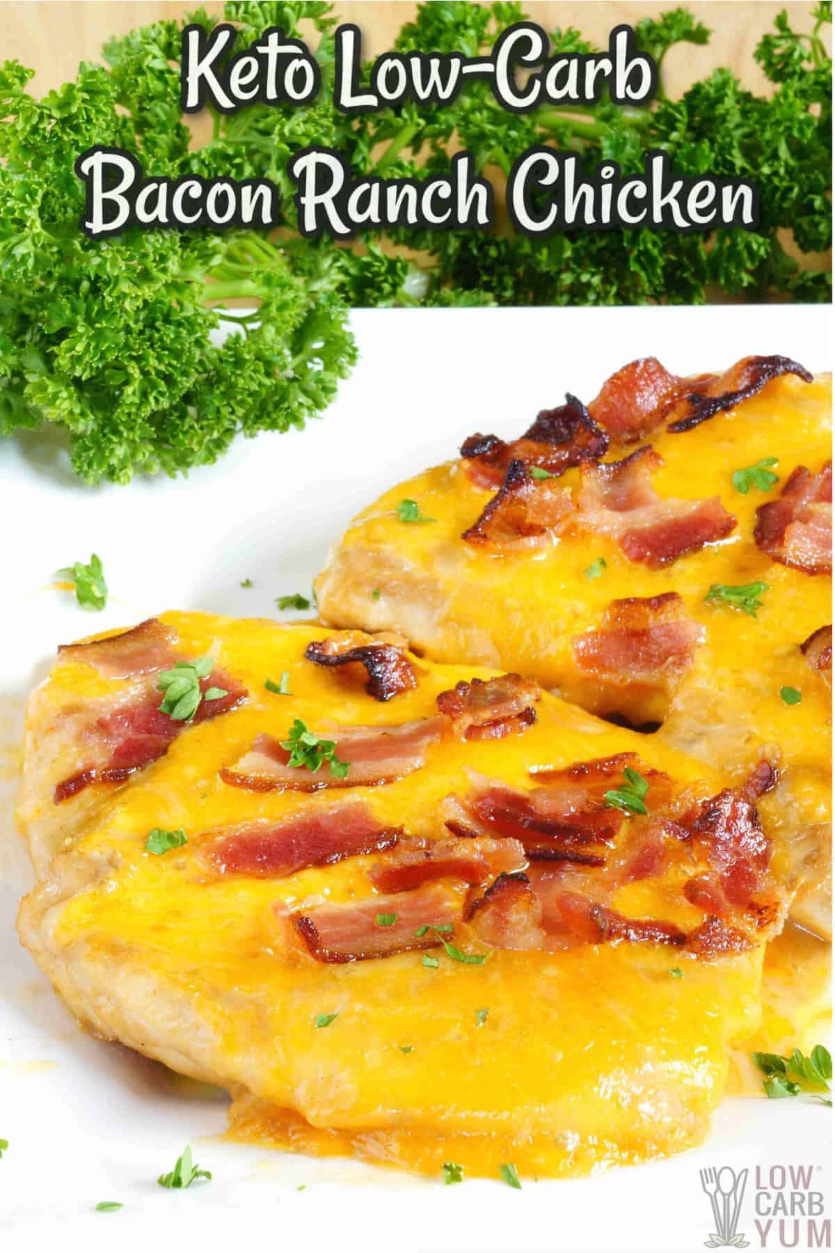 cover image for bacon ranch chicken recipe