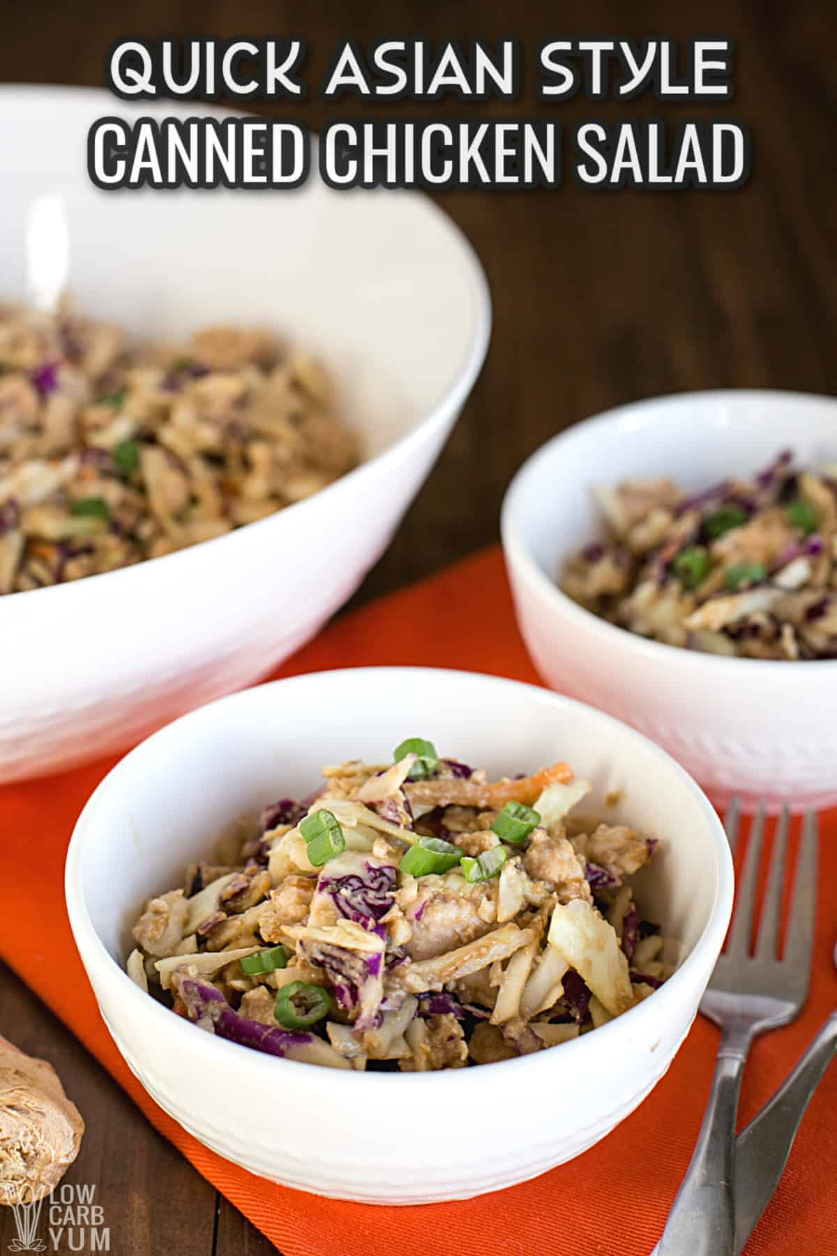 asian canned chicken salad recipe cover image