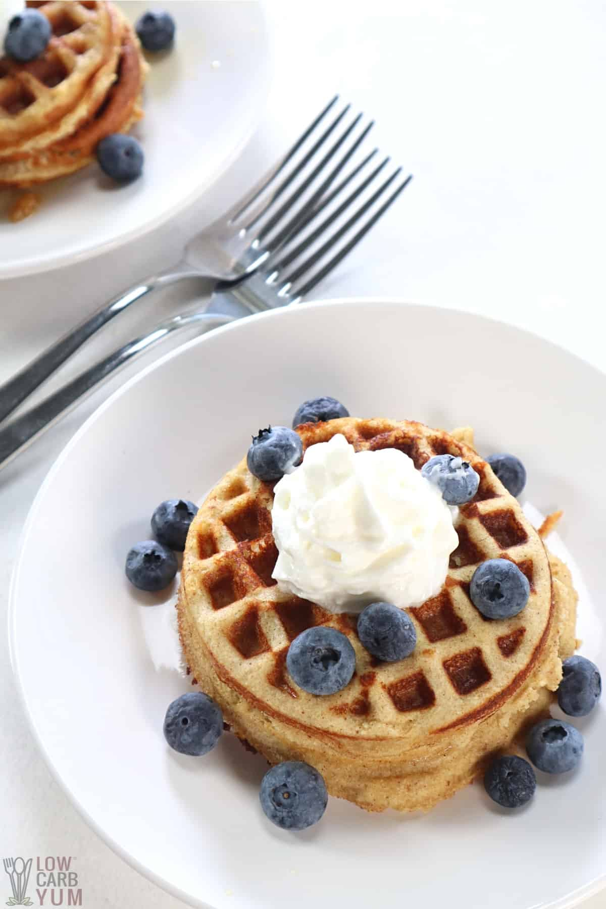 serving cinnamon waffles with blueberries and whipped cream
