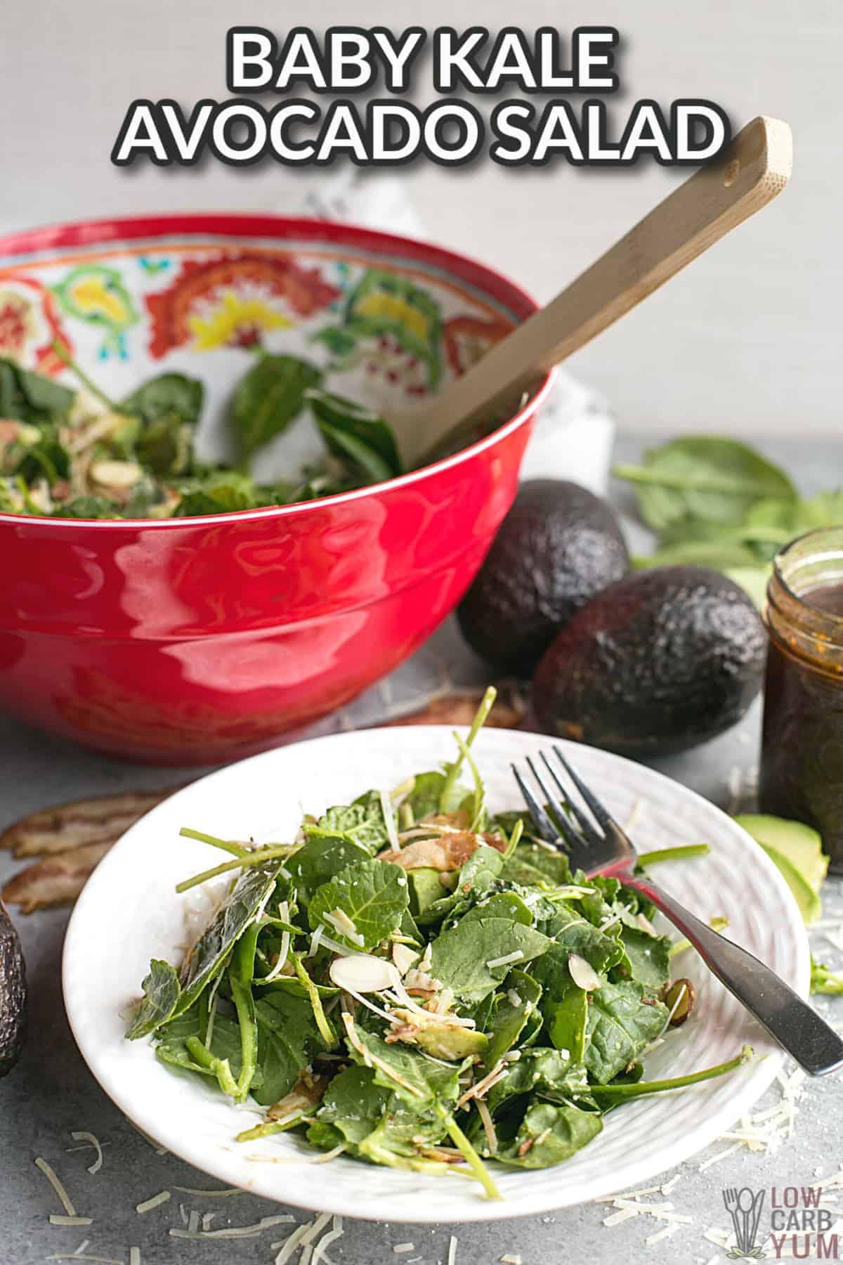 baby kale avocado salad cover image