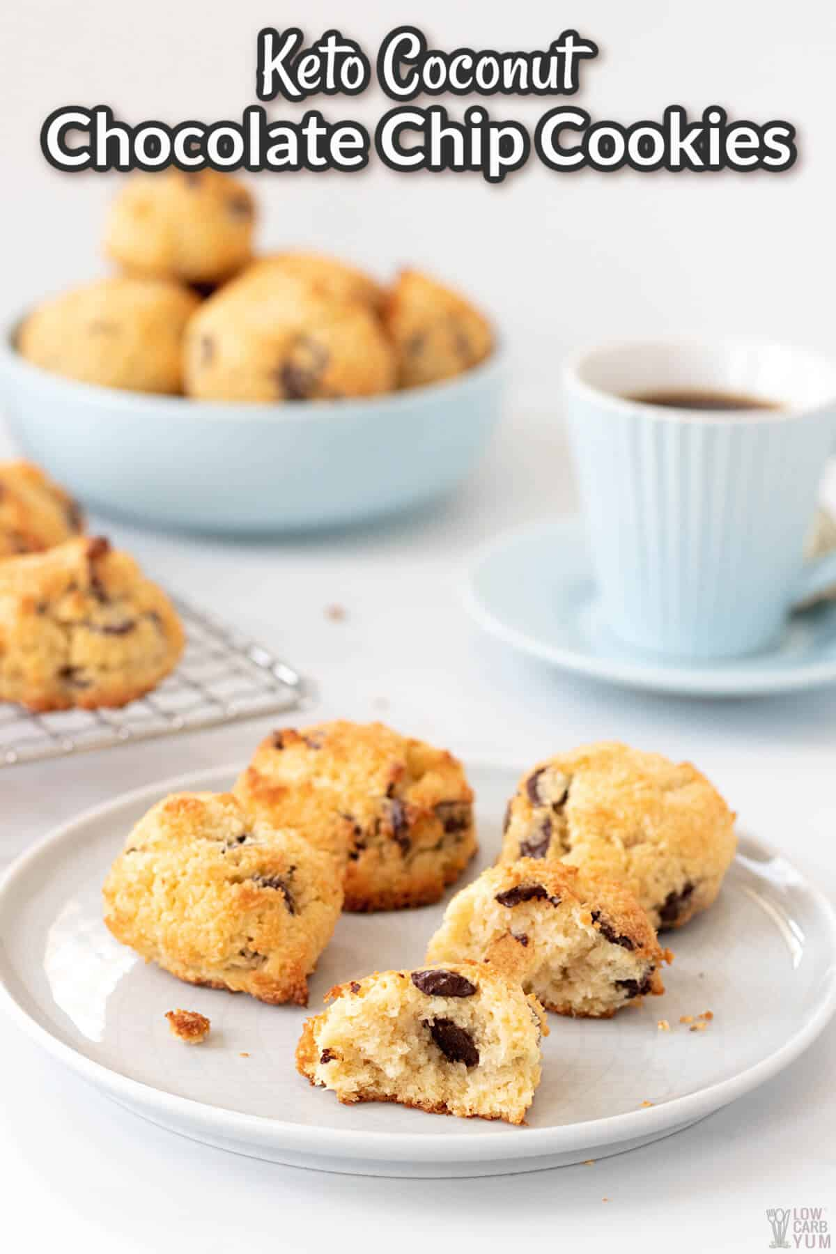 keto coconut chocolate chip cookies recipe cover image