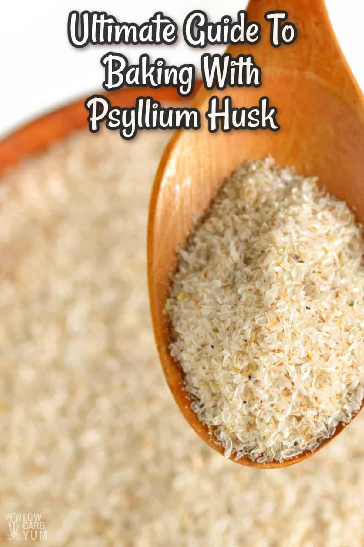 psyllium husks in baking cover image